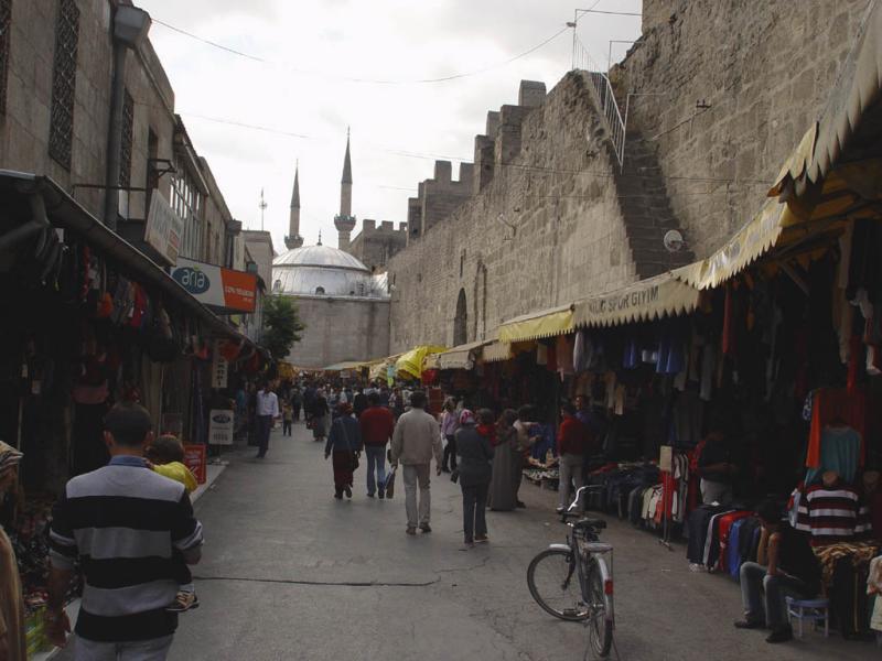Kayseri at city walls 2557