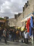 Kayseri at city walls 2556