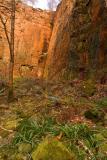 Newtown Quarry, Mountain Ash
