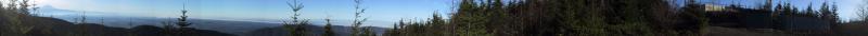 T2 panorama