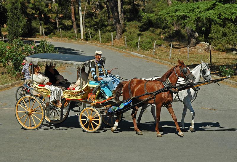 Büyükada transportation (cars are prohibited on the island)