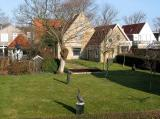 Dorpsstraat: achtertuinen