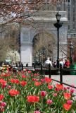 Spring 2005 - Washington Square Park