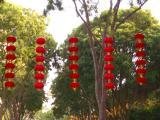 chinese new year 2005