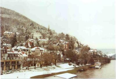 Rare Snow in Neunheim