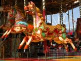 DSCN2781.JPG Gallopers