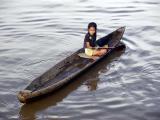 The Amazon 2002
