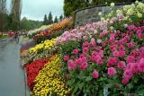 Blumeninsel Mainau 1997