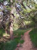 Walking Trail, Palo Duro Canyon