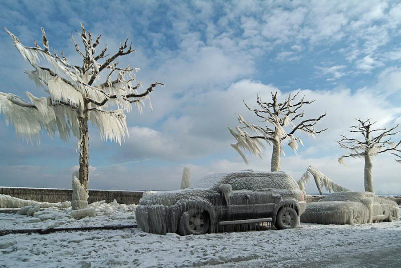 Frozen cars and trees
