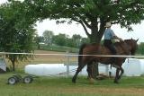 One Horse Power Mower