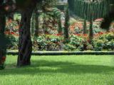 The Bahai Gardens 13.JPG