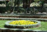 The Bahai Gardens 63.JPG