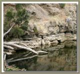 Onkaparinga river reflections