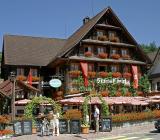 Hotel Swiss Chalet in Meerlischachen