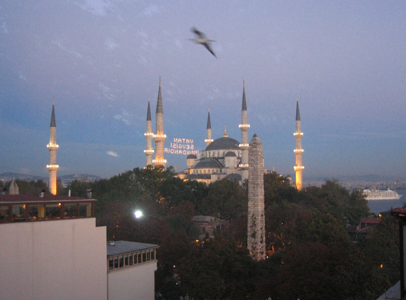 Bird and Mosque