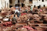 Fes Tannery #2