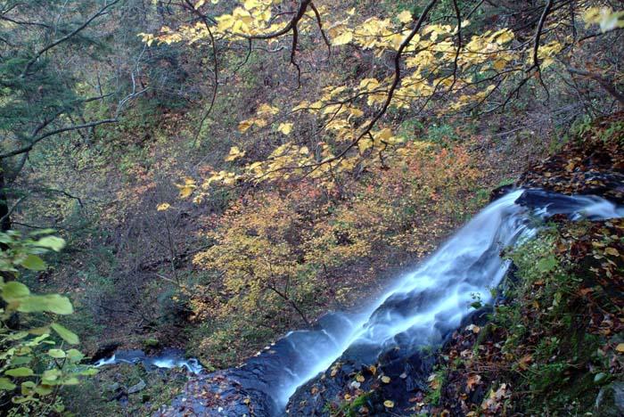 Seimons Falls
