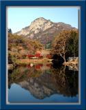 Naejangsan (Mt.Naejang) National Park 내장산 - Korea