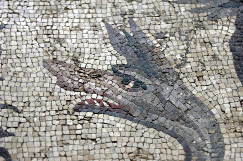 Gaziantep Museum 8227