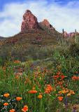 Apache Trail Spire