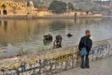 Elephant Bath near the Amber Fort