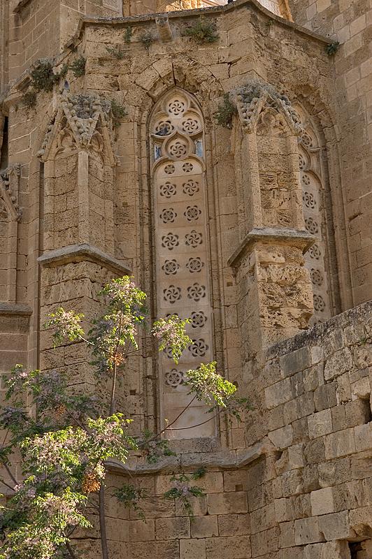 St. Nicholas/Lala Mustafa