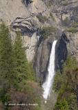 Yosemite Falls (Lower)