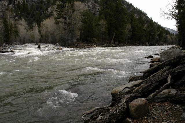 Animas river - Cascade - Colorado