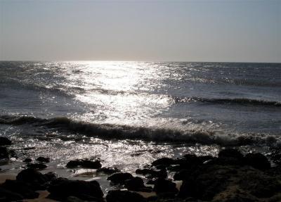 Península de Paraguaná , Playa de Punta Macoya 2, Edo. Falcón