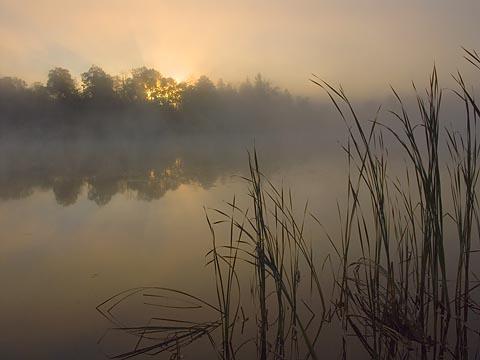 Scugog River Sunrise