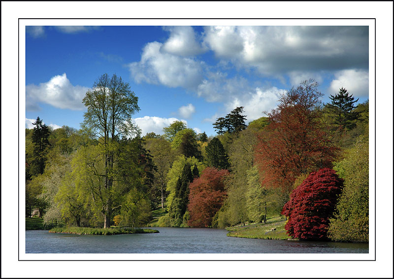 Lake and island ~ Stourhead