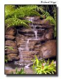 Fernery Fountain
