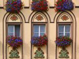 Six flowerboxes in Regensburg