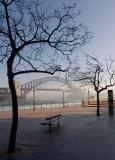 Foggy morning in Sydney town