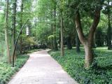 West Lake path