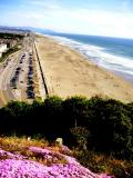 Beach from Sutro Park in San Francisco