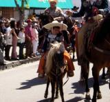 Littlest horseman