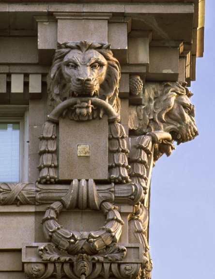 Lions, Seattle, Washington