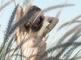 עירום בטבע