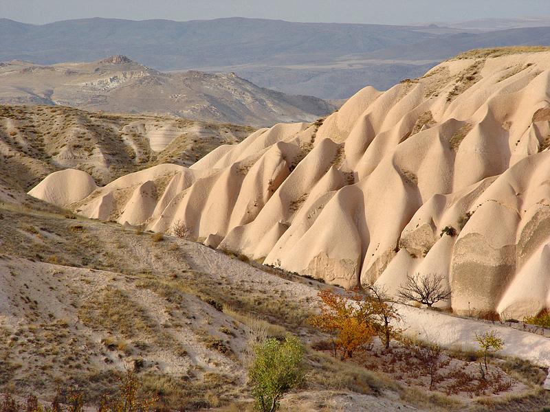 Dune (Landscape Challenge, 5th place)
