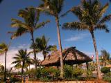 Second day  Polynesian Culture Center tour