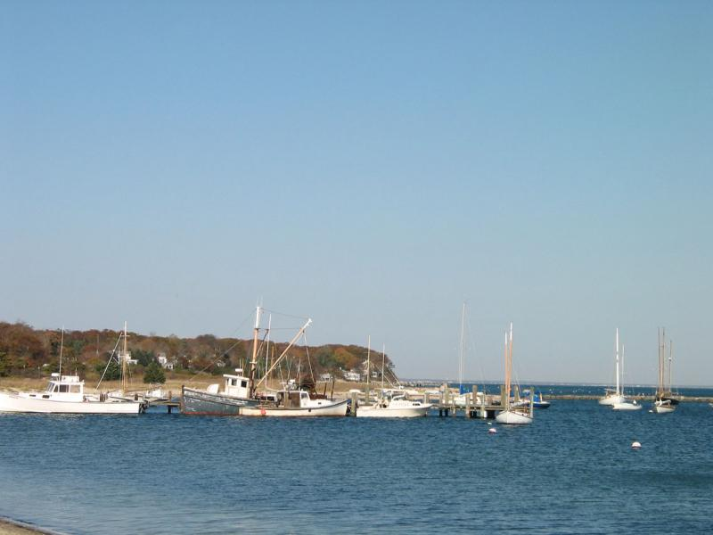 Vineyard Haven