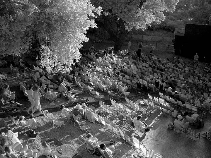 Late afternoon crowd (infrared photo)