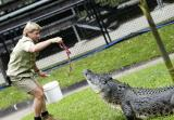 © Steve Irwin at his Australia Zoo