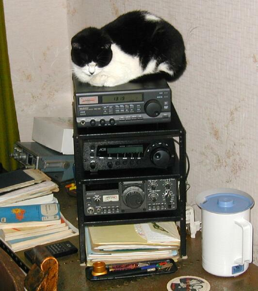 Blackie on hamradio equipment