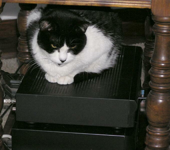 Satellite boxes are nice and warm
