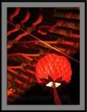 Buddhist Temple Lotus Lantern