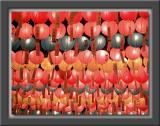 Lanterns for Buddha's 2543rd Birthday
