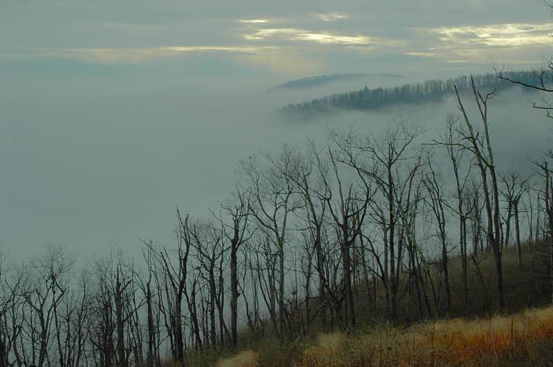 11/20/04 - Mist & Clouds